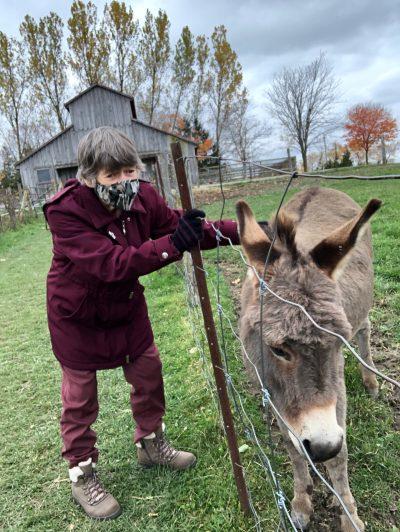 passport story, community living guelph wellington, clgw, mapleton farms, animals